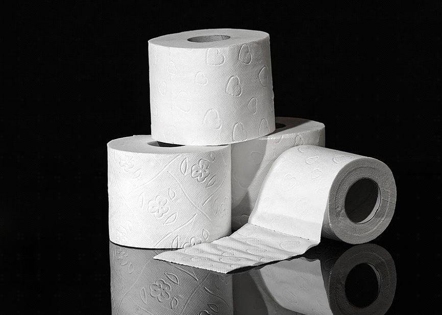 DIY Toilet Paper